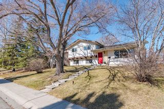 Main Photo: 216 Silvercreek Close NW in Calgary: Silver Springs Detached for sale : MLS®# A1094494