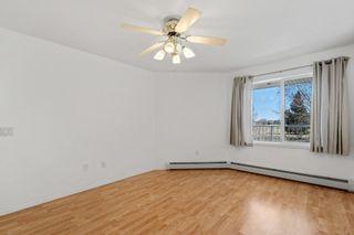 Photo 15: 215 78 McKenney Avenue: St. Albert Condo for sale : MLS®# E4237231