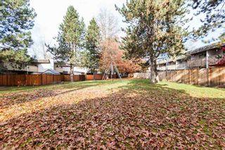 "Photo 17: 11679 FULTON Street in Maple Ridge: East Central Townhouse for sale in ""CEDAR GROVE"" : MLS®# R2418584"