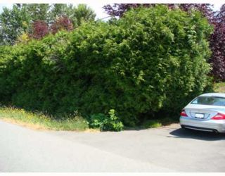 Photo 5: 10760 PALMBERG Road in Richmond: East Richmond House for sale : MLS®# V773838