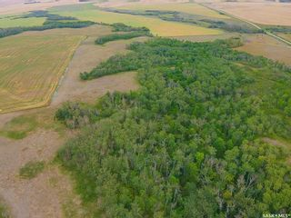 Photo 12: Rm Indian Head 160.39 acres in Indian Head: Farm for sale (Indian Head Rm No. 156)  : MLS®# SK867616