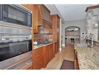 Photo 6: 18 DISCOVERY VISTA Point(e) SW in Calgary: Discovery Ridge House for sale : MLS®# C4018901
