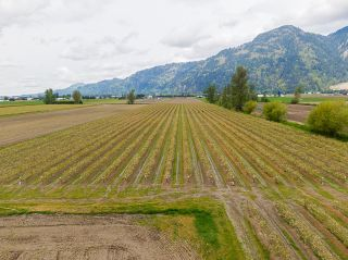 Photo 40: 5111 TOLMIE Road in Abbotsford: Sumas Prairie House for sale : MLS®# R2605990