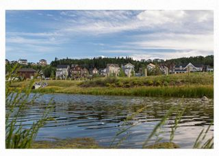 Photo 40: 136 Riviera Way: Cochrane Detached for sale : MLS®# A1132408