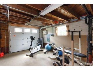 Photo 15: 1254 Basil Ave in VICTORIA: Vi Hillside House for sale (Victoria)  : MLS®# 669395