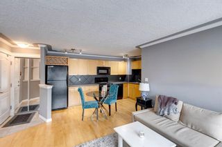 Photo 9: 202 343 4 Avenue NE in Calgary: Crescent Heights Apartment for sale : MLS®# A1118718