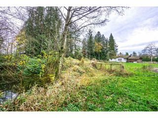 "Photo 16: 1224 240 Street in Langley: Otter District House for sale in ""South Langley"" : MLS®# R2122822"