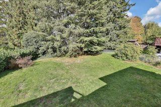 "Photo 23: 15079 BLUEBIRD Crescent in Surrey: Bolivar Heights House for sale in ""BIRDLAND"" (North Surrey)  : MLS®# R2623655"