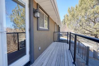 Photo 19: 27 Meadowview Road SW in Calgary: Meadowlark Park Detached for sale : MLS®# A1084197