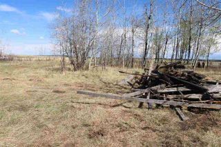 Photo 10: 57032 RR 50: Rural Lac Ste. Anne County Rural Land/Vacant Lot for sale : MLS®# E4244016