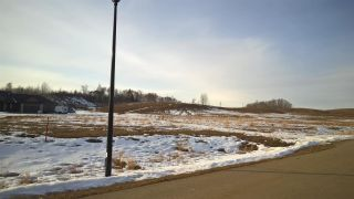 Photo 7: 71 25527 TWP RD 511A Road: Rural Parkland County Rural Land/Vacant Lot for sale : MLS®# E4235763
