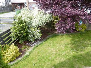 Photo 19: 3475 ADANAC Street in Vancouver: Renfrew VE House for sale (Vancouver East)  : MLS®# V1066128
