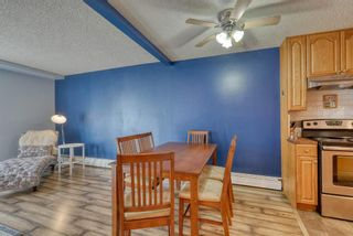 Photo 10: 306 315 Heritage Drive SE in Calgary: Acadia Apartment for sale : MLS®# A1090556