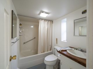 Photo 24: 238 Beechwood Ave in : Vi Fairfield East House for sale (Victoria)  : MLS®# 854081