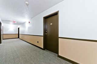 Photo 26: 103 11 Dover Point SE in Calgary: Dover Apartment for sale : MLS®# A1083330