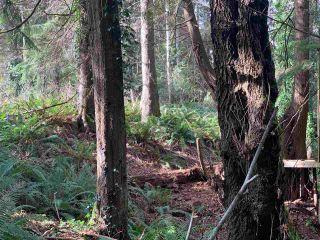 Photo 22: 5852 MARINE Way in Sechelt: Sechelt District Land for sale (Sunshine Coast)  : MLS®# R2545877
