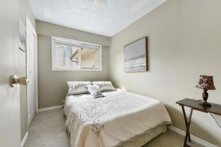 Photo 19: 4034 Elise Pl in : SE Lake Hill House for sale (Saanich East)  : MLS®# 886161