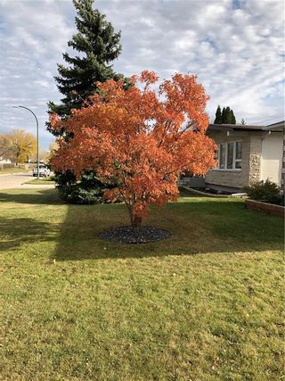 Photo 18: 235 Carriage Road in Winnipeg: Heritage Park Residential for sale (5H)  : MLS®# 202110278