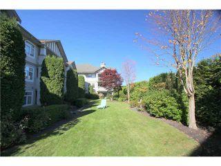 Photo 10: 104 4770 52A Street in Ladner: Delta Manor Condo for sale : MLS®# V982183