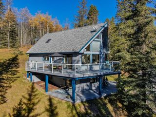 Photo 45: 111 Aspen Creek Drive: Rural Foothills County Detached for sale : MLS®# A1151574