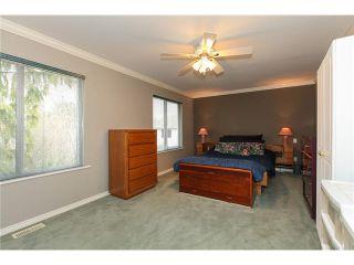 Photo 6: 20635 125th Avenue in MAPLE RIDGE: Home for sale : MLS®# V991893