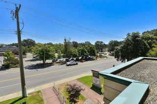 Photo 20: 203 3460 Quadra St in : SE Quadra Condo for sale (Saanich East)  : MLS®# 882774