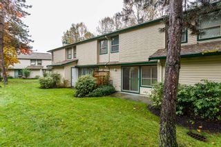 Photo 19: 35 21960 RIVER Road in Maple Ridge: West Central Townhouse for sale : MLS®# R2118565