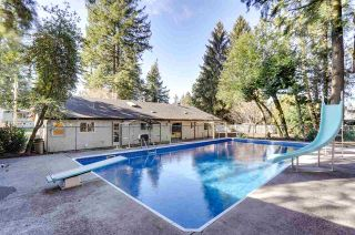 Photo 24: 3650 203A Street in Langley: Brookswood Langley House for sale : MLS®# R2542609