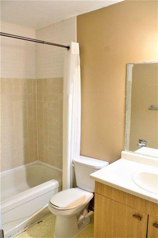 Photo 15: 18708 57 Avenue in Edmonton: Zone 20 House for sale : MLS®# E4231416