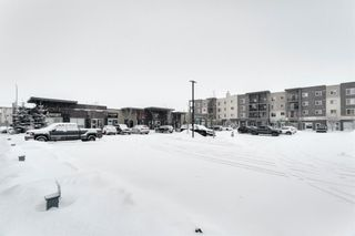 Photo 27: 4319 403 Mackenzie Way SW: Airdrie Apartment for sale : MLS®# A1067372