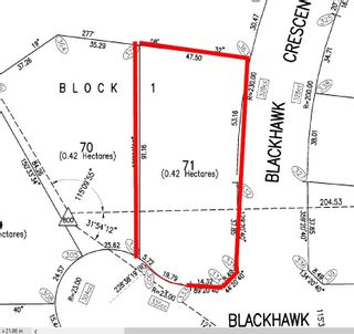 Photo 5: 71 25527 TWP RD 511A Road: Rural Parkland County Rural Land/Vacant Lot for sale : MLS®# E4235763