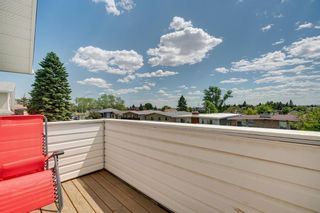 Photo 21: 2814 12 Avenue SE in Calgary: Albert Park/Radisson Heights Detached for sale : MLS®# A1123286