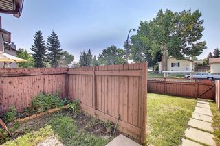 Photo 42: 55 6020 Temple Drive NE in Calgary: Temple Row/Townhouse for sale : MLS®# A1140394