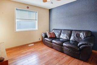 Photo 17: 26 Jensen Heights Place NE: Airdrie Detached for sale : MLS®# A1062665