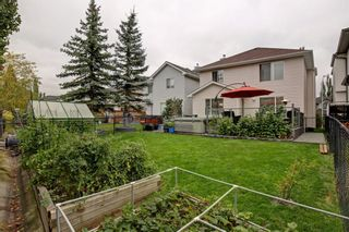 Photo 31: 100 Mt Selkirk Close SE in Calgary: McKenzie Lake Detached for sale : MLS®# A1063625
