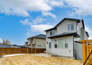 Photo 32: 151 Cranford Green SE in Calgary: Cranston Detached for sale : MLS®# A1088910