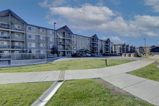 Main Photo: 2205 181 Skyview Ranch Manor NE in Calgary: Skyview Ranch Apartment for sale : MLS®# A1150789