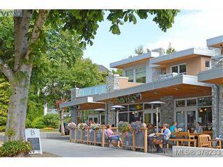 Photo 18: 104 420 Linden Ave in VICTORIA: Vi Fairfield West Condo for sale (Victoria)  : MLS®# 759474