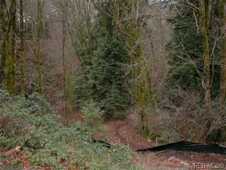 Photo 5: 393 Atkins Ave in VICTORIA: La Atkins Land for sale (Langford)  : MLS®# 628880