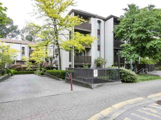 """Photo 1: 15 365 GINGER Drive in New Westminster: Fraserview NW Townhouse for sale in """"Fraser Mews"""" : MLS®# R2458131"""