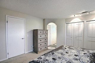 Photo 29: 117 Hawkford Court NW in Calgary: Hawkwood Detached for sale : MLS®# A1103676