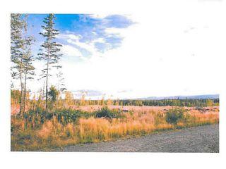 """Photo 12: LOT 15 BELL Place in Mackenzie: Mackenzie -Town Land for sale in """"BELL PLACE"""" (Mackenzie (Zone 69))  : MLS®# N227308"""