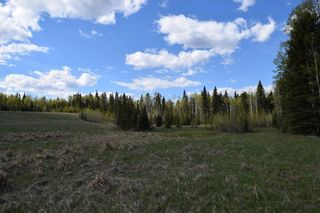Photo 11: TWP Rd 310: Rural Mountain View County Land for sale : MLS®# C4292828
