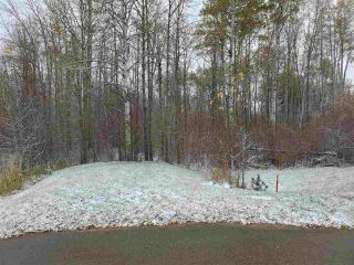 Photo 3: 17 51222 RGE RD 260: Rural Parkland County Rural Land/Vacant Lot for sale : MLS®# E4218239