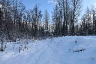 """Photo 21: 8 3000 DAHLIE Road in Smithers: Smithers - Rural Land for sale in """"Mountain Gateway Estates"""" (Smithers And Area (Zone 54))  : MLS®# R2280427"""