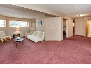 Photo 22: 317 CITADEL HILLS Circle NW in Calgary: Citadel House for sale : MLS®# C4112677
