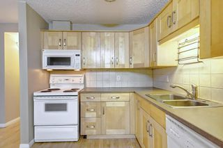 Photo 15: 404 1540 29 Street NW in Calgary: St Andrews Heights Apartment for sale : MLS®# C4281452