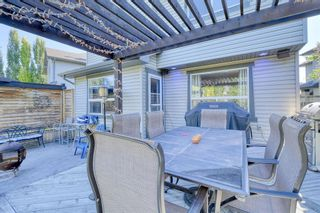 Photo 41: 205 Cranfield Manor SE in Calgary: Cranston Detached for sale : MLS®# A1144624