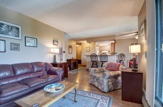Photo 9: 311 8604 48 Avenue NW in Calgary: Bowness Apartment for sale : MLS®# A1113873