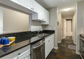 Photo 14: 304 545 18 Avenue SW in Calgary: Cliff Bungalow Apartment for sale : MLS®# A1129205